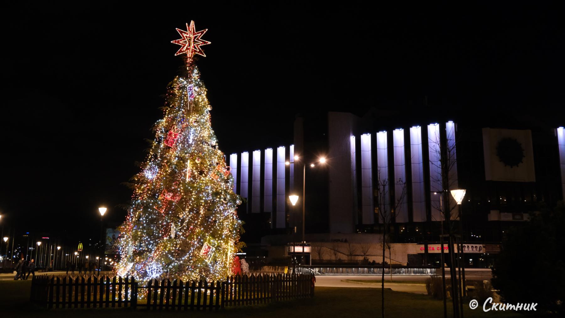 Коледната елха в градината на НДК